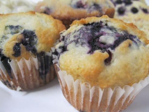 blueberry muffin close up